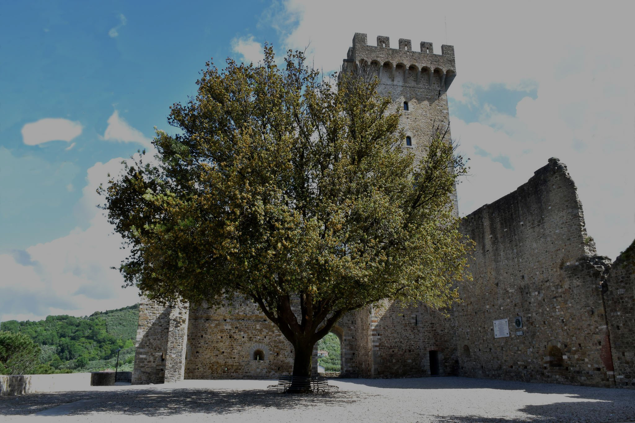 Uniti per Castelnuovo